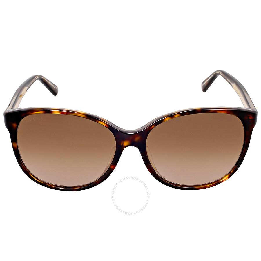 gucci female gucci cat eye asia fit havana frame ladies sunglasses gg3854fskclj6