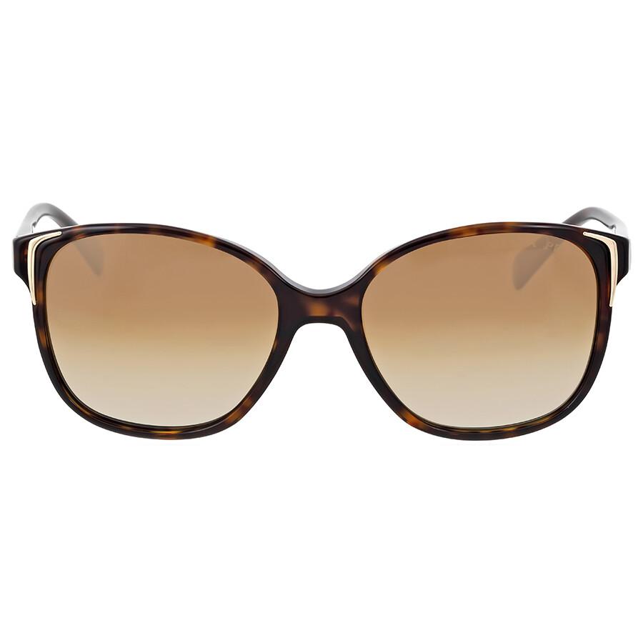 prada prada havana brown plastic sunglasses pr01os2au6e155